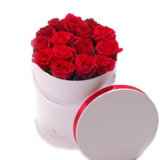 Roses in white round box