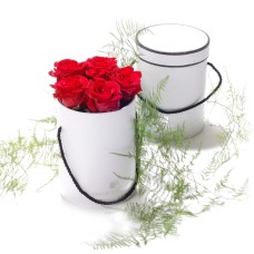 Roses in round box