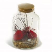 Red Forever roses in glass vase