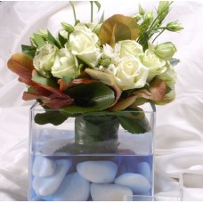 White lysianthus blue reflections