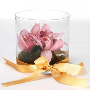 Cymbidiums in a vase