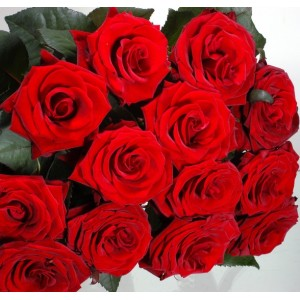 Twelve red roses bouquet