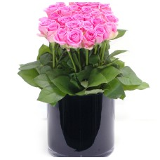 30 pink roses in glass vase
