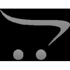 Ορχιδέα Single Phalenopsis